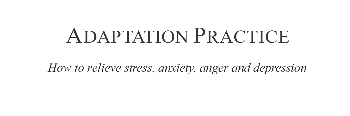 Adaptation Practice relieve stress, anxiety, anger, depression header image