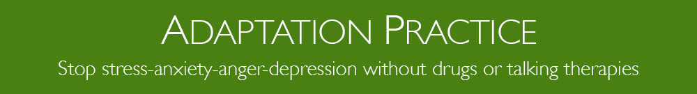 Adaptation Practice stop stress, anxiety, anger, depression header image