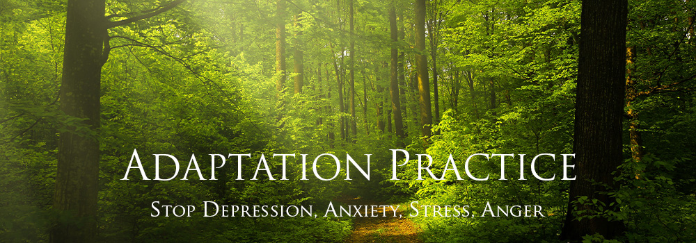 Adaptation Practice: stop stress, anxiety, anger, depression header image
